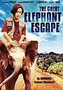 Фильм «Великий побег слонов» (1995)