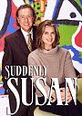 Сериал «Непредсказуемая Сьюзан» (1996 – 2000)