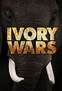Серіал «Войны за слоновую кость» (2013 – 2014)