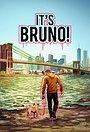 Ох уж этот Бруно!
