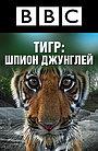 BBC: Тигр – Шпион джунглей