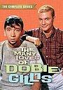 Серіал «Успех Доби Гиллис» (1959 – 1963)