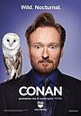 Серіал «Конан» (2010 – ...)