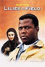 Фільм «Польові лілеї» (1963)