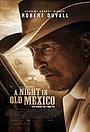 Фільм «Ночь в старой Мексике» (2013)
