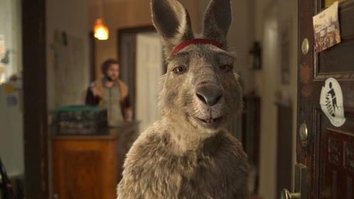 «Осторожно, кенгуру!» — кадры