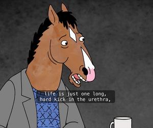 «Конь БоДжек» — кадры